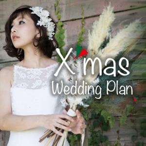 特定日限定5組<br>Xmas Wedding Plan