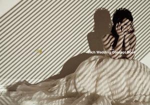 2013 Rich Wedding Concept Book